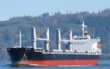 MV MARTIN ISLAND - CARGO HOLD HATCH COAMING REPAIRS