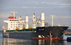 MV ERLYNE-PROVISION REF. PLANT REPAIRS AT SON DUONG PORT
