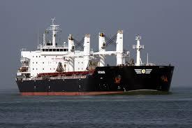 MV PANAGIA KORONA - DIESEL GENERATOR TROUBLESHOOTING AT CAM PHA ANCHORAGE